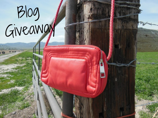 Coral Handbag Blog Giveaway