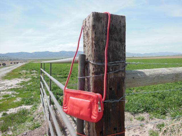 Coral Handbag Giveaway 2