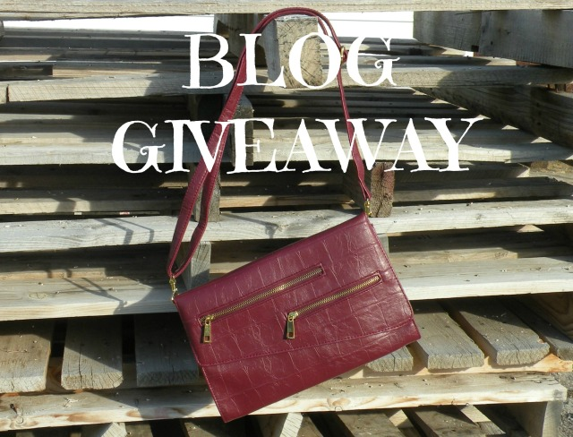 Blog Giveaway 2
